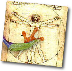 treefrog foot on Leonardo da Vinci's Vetruvian Man drawing